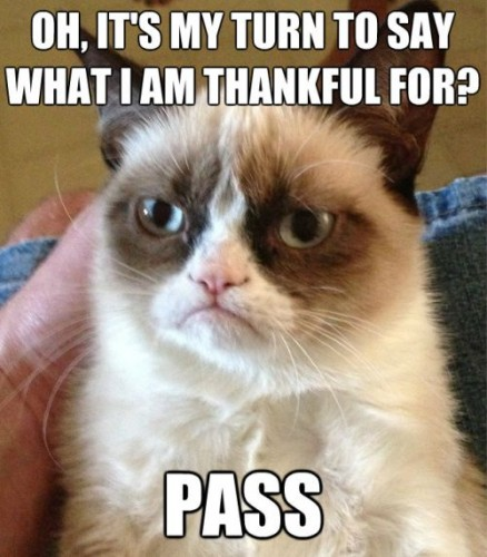 funny_thanksgiving_cat_pictures-8-438x500