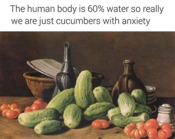 Humans = cucumbers with anxiety